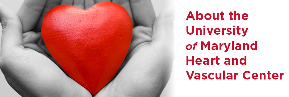 About the UM Heart and Vascular Center
